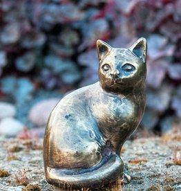 Katze Pia klein, sitzend