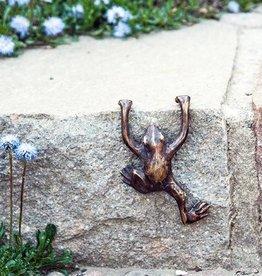 Frosch hängend