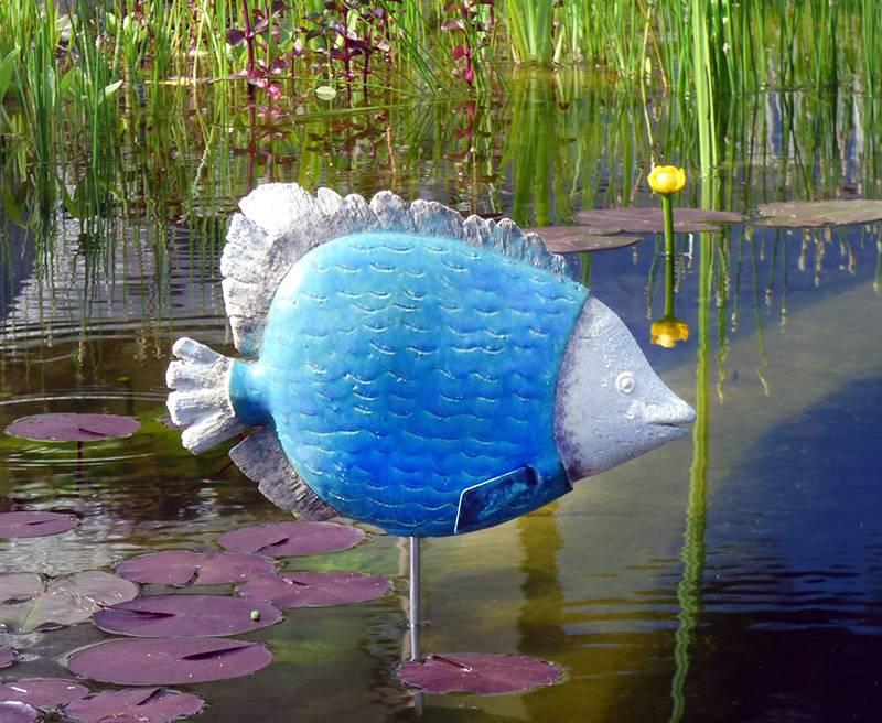 Exotischer Fisch