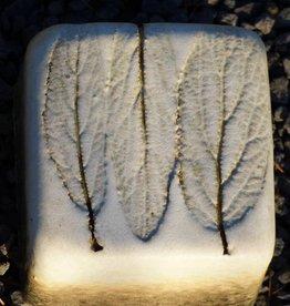 Motiv Pflasterstein mit Abdruck eines natürlichen Blattes