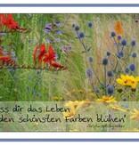 """Postkarte """"Lass dir das Leben in den schönsten Farben blühen"""""""
