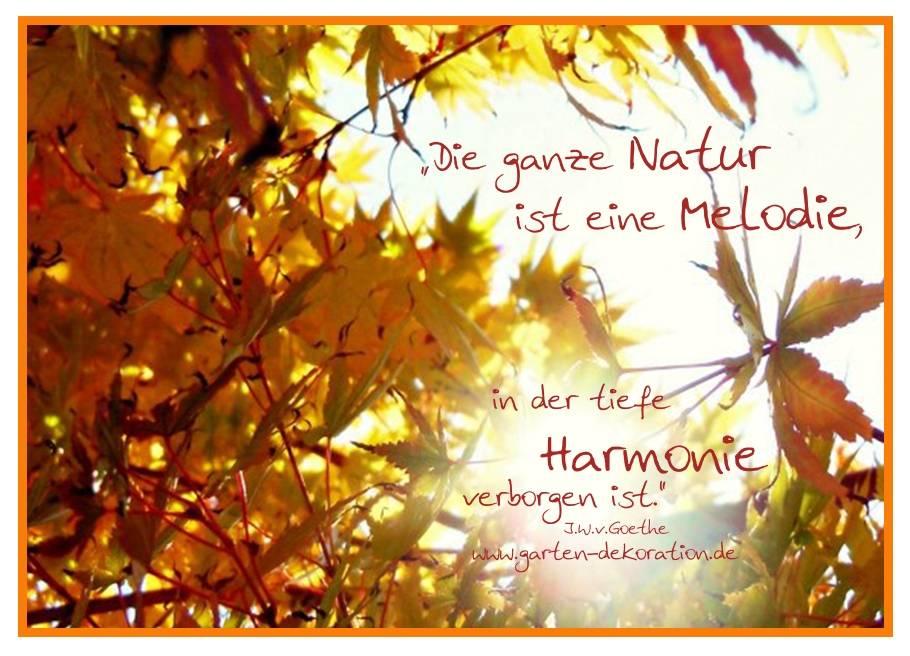 """Postkarte """"Die ganze Natur ist eine Melodie"""""""