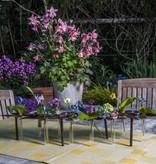 """Tischdeko """"Blumen"""" mit 10 Reagenzgläser"""