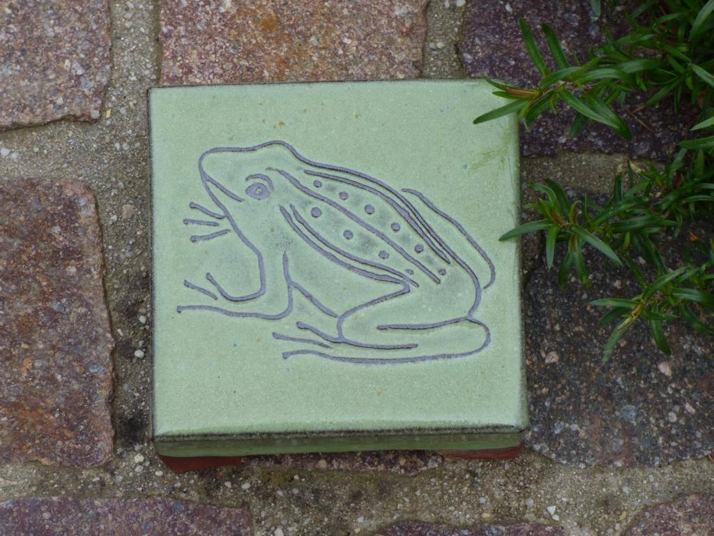 Motiv Pflasterstein Frosch in lindgrün