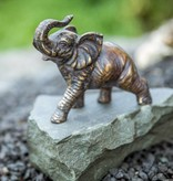 Elefant mit gehobenem Rüssel
