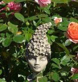 Blumenkind Rittersporn