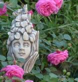 Blumenkind Gladiole