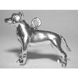 Amerikaanse pitt bull terrier - oren gecoupeerd - Ashanger