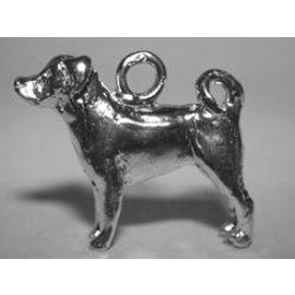 Appenzeller ( sennenhond ) - Ashanger