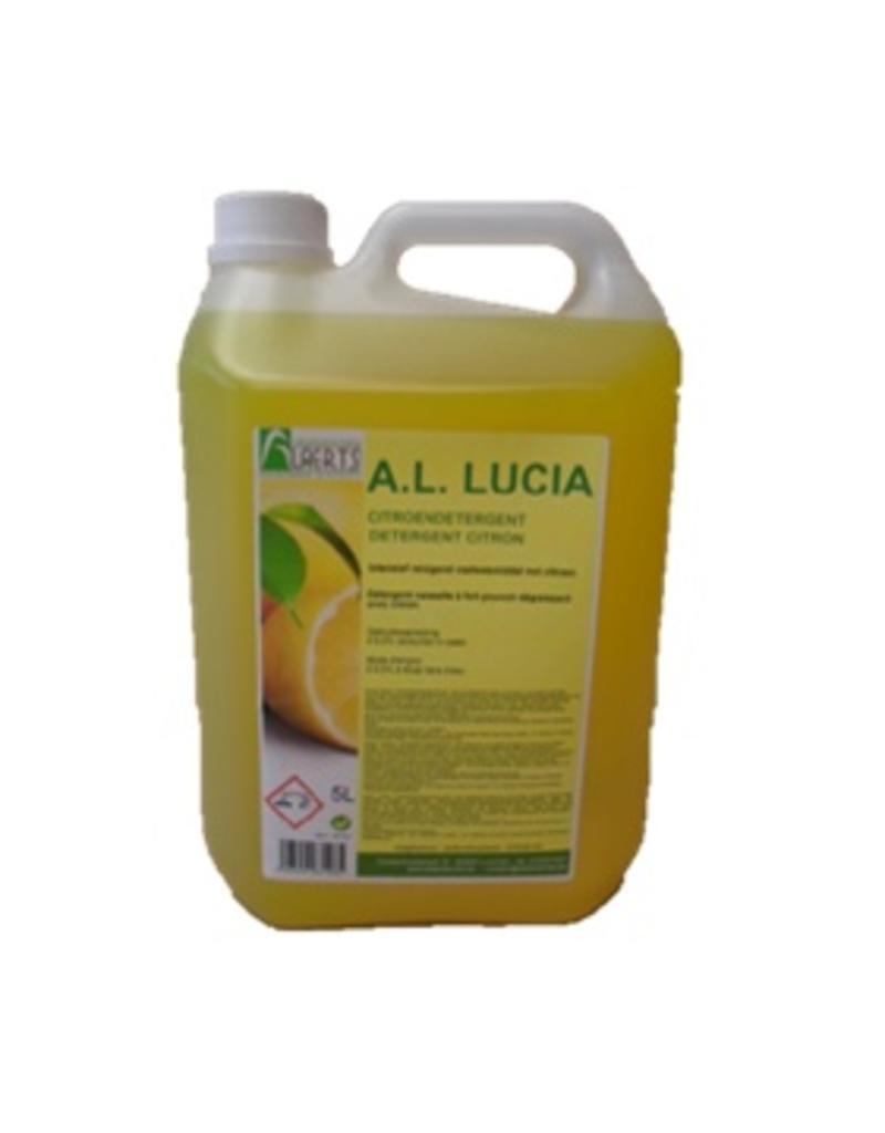 Detergent Lucia Citroen Budget 5L