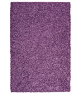 Catay 8507 Purple