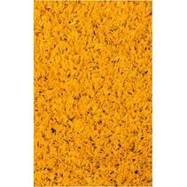 LSR 24 FUN Yellow