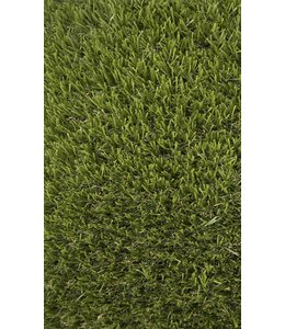 Edel Grass Landscaping Nove 32