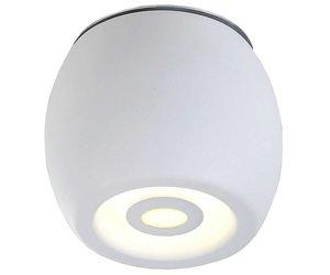 Plafondlamp led buiten wit of zwart rond dimbaar w mm hoog