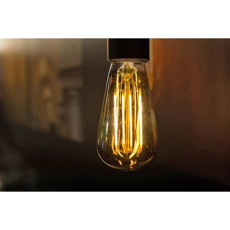 Squirrel cage LED filament dimmable 6W gold colour