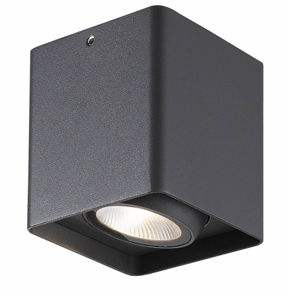 https://static.webshopapp.com/shops/071227/files/092264009/plafondlamp-wit-zwart-of-grijs-badkamer-led-9w.jpg