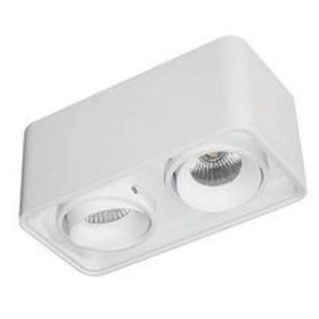 Plafonnier salon LED orientable rectangulaire 195mm 2x10W