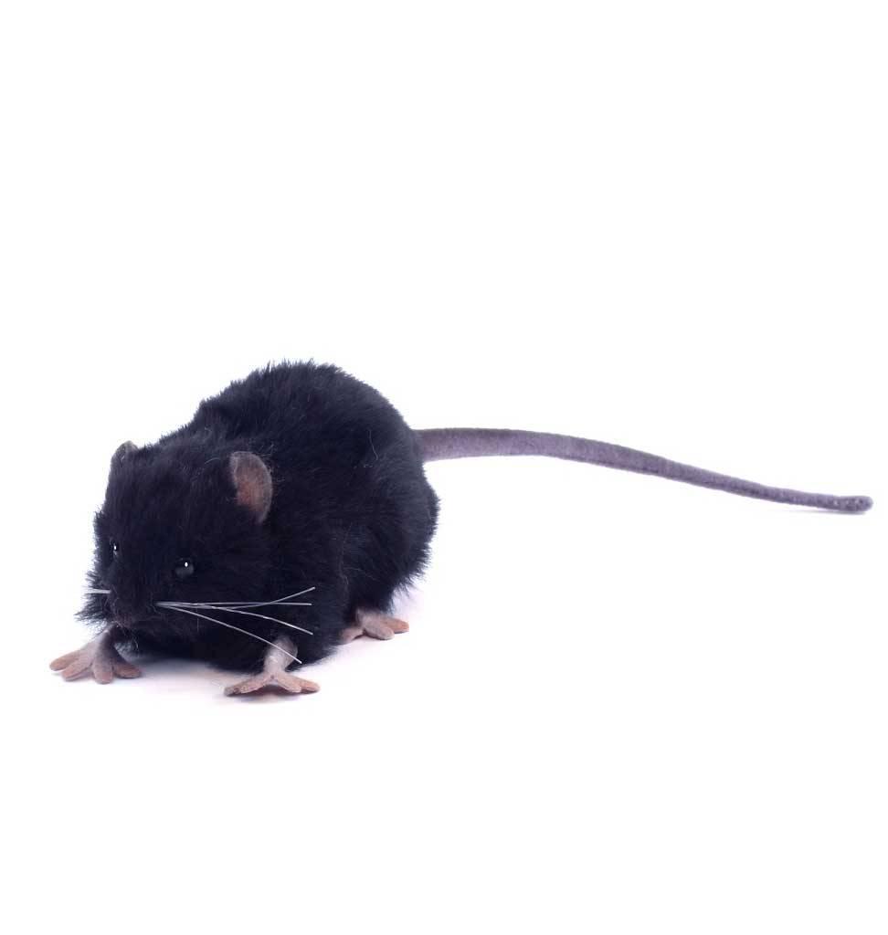Hansa knuffels zwarte rat knuffel Hansa 12 cm