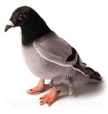 Hansa knuffels Pigeon Hansa Toy
