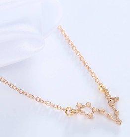 Sternzeichen Halskette Fisch gold