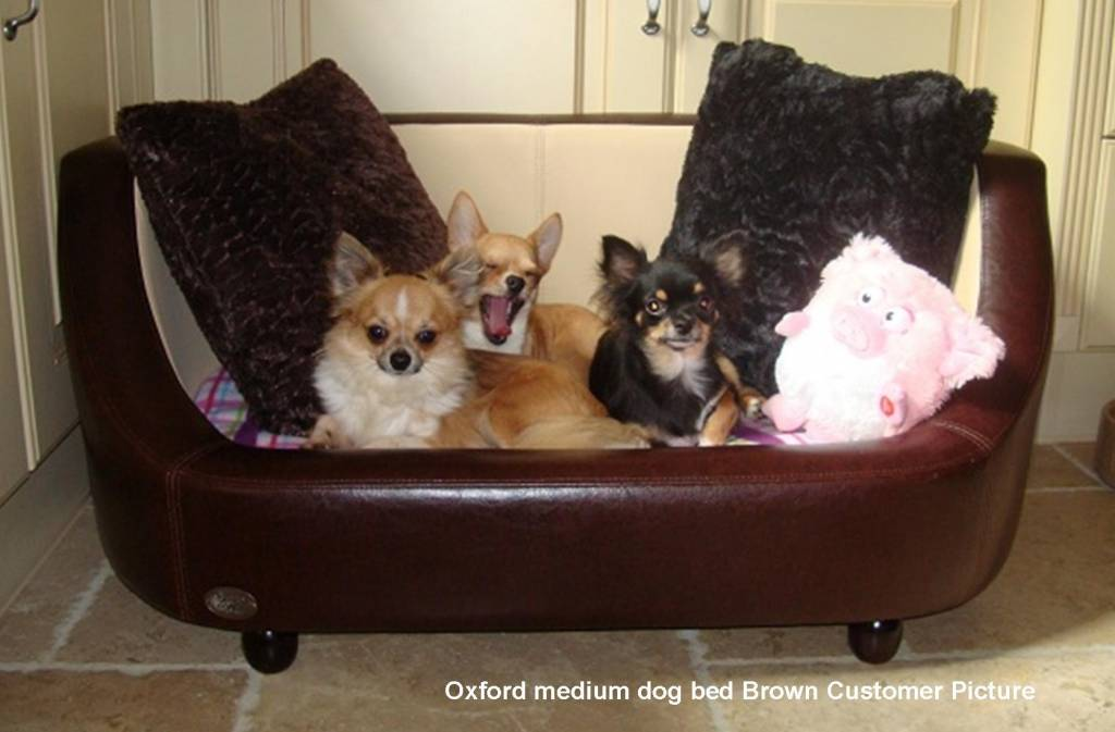 Chester & Wells Oxford Hondenbank medium bruin