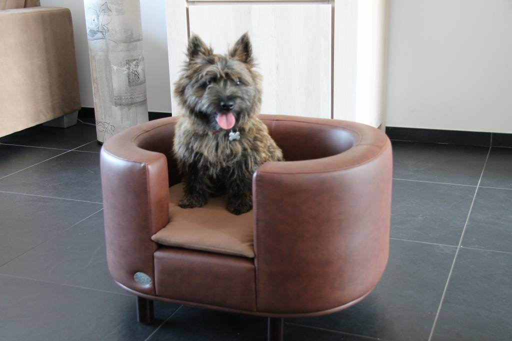 Chester & Wells Hampton Hundesofa braun large