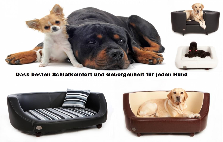 Dass besten Schlafkomfort und Geborgenheit für jeden Hund
