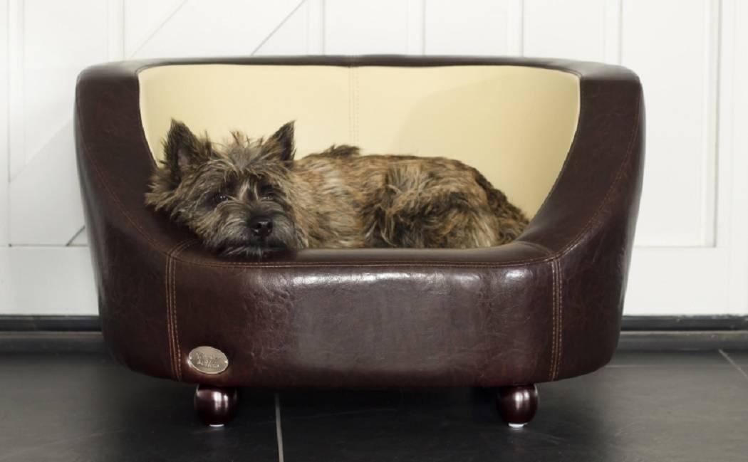 De klassieker uit de Chester & Wells collectie, de Oxford hondenbank