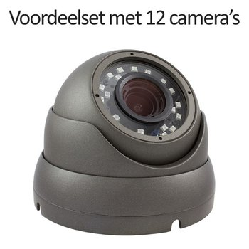 CHD-CS12DA3 - 16 kanaals NVR inclusief 12 CHD-DA3 IP camera's