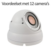 CHD-CS12D1-W - 16 kanaals NVR inclusief 12 witte CHD-D1 IP camera's