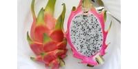 TPA Dragon Fruit Flavor