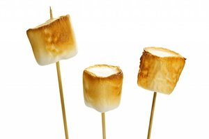 TPA. Toasted Marshmallows Flavor