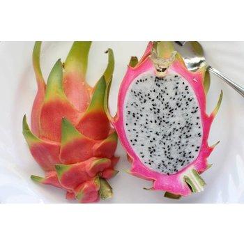 TPA. Dragonfruit Flavor