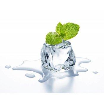 TPA. Flüssige Menthol-Aroma