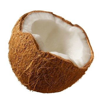 TPA. Coconut
