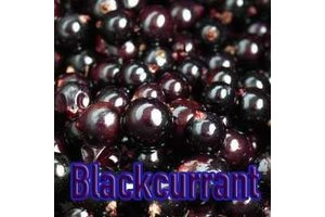 BLACKCURRANT 1ML