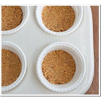 TPA CHEESECAKE ( graham crust )
