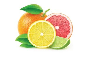 FLAVOUR ART CITRUS MIX