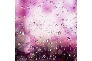 INAWERA PURPLE RAIN