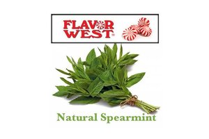 Flavor West SPEAR MINT