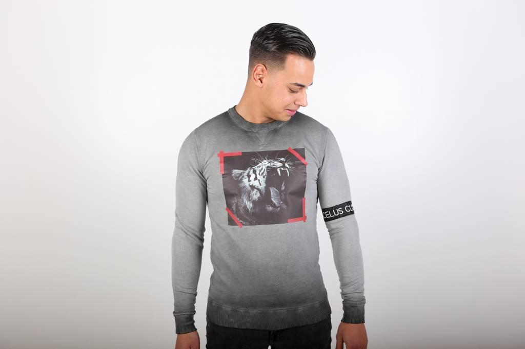 Icelus Clothing Tiger Sweater Grey