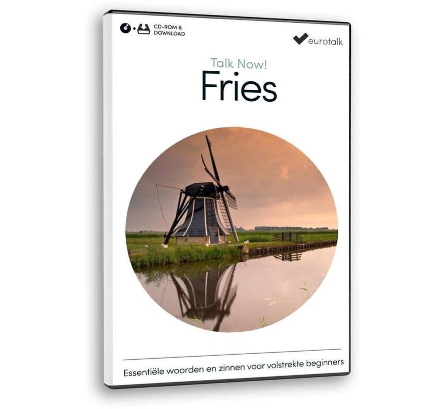 Basis cursus Fries voor Beginners