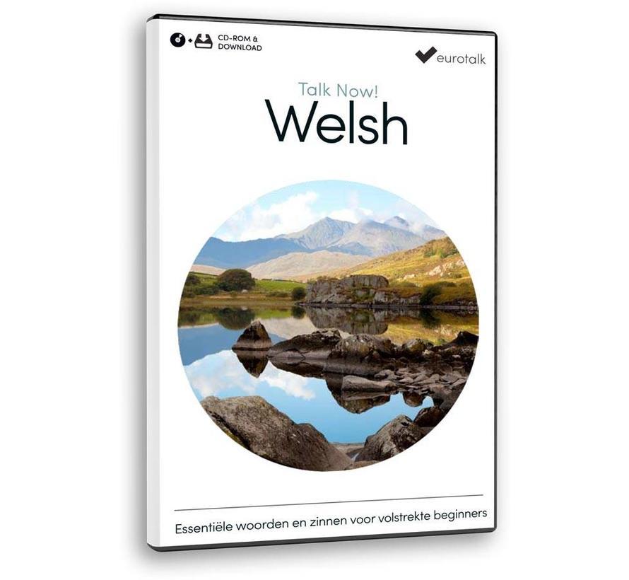 Basis cursus Welsh voor Beginners