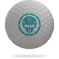 FOREACE 3 Pieces Golfball - Poseidon