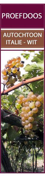Proefdoos met 6 Italiaanse autochtone druiven - Wit