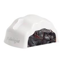 No Label CCFL LED Light Sea Shell