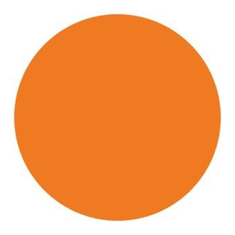 Nail Perfect 3D Embossed Gel #010 Oranje