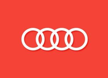 Housse de clé Audi