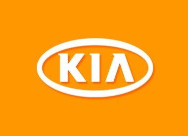 Kia Key Cover
