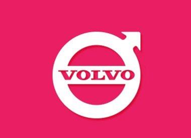 Volvo Key Cover